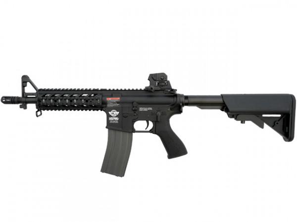 CM16 Raider / EGC-16P-RDS-BNB-NCM